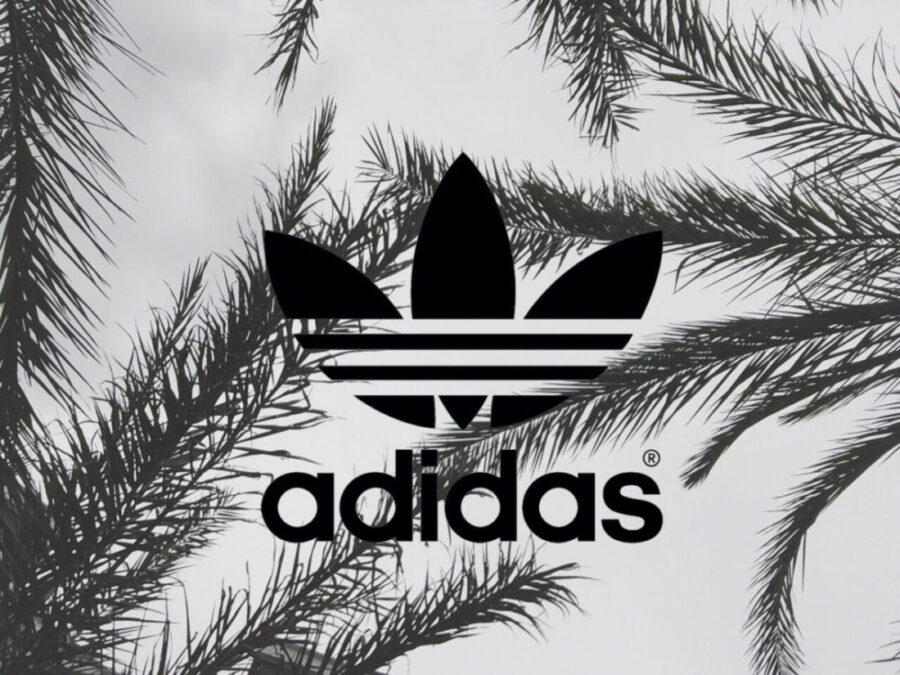 Чем кроссовки adidas интереснее Nike